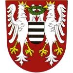 Infocentrum Březnice – logo společnosti