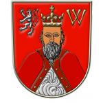 Město Nové Strašecí (kulturní dům a informační centrum) – logo společnosti