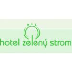 HAVLÍČEK Pavel - Hotel Zelený strom – logo společnosti