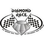 DIAMOND RACE INTL s.r.o. – logo společnosti