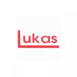 Lukáš Luděk, Ing. – logo společnosti
