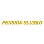 Věra Vohníková- Pension Slunko – logo společnosti