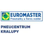 PNEUCENTRUM KRALUPY s.r.o. – logo společnosti