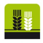 Vlasta Krejčiříková – logo společnosti