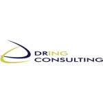 DRING Consulting s.r.o. – logo společnosti