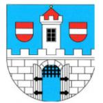 Obec Chlumín – logo společnosti