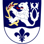 Obec Nová Ves – logo společnosti