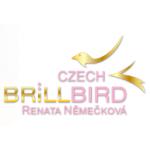 Němečková Renata - Nehtové studio Náchod – logo společnosti