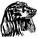 MVDr. Ryba Ondřej – logo společnosti