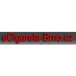 Budík Zdeněk – logo společnosti
