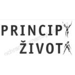 Pižlová Zdenka – logo společnosti