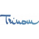 TRINOM, spol. s r.o. – logo společnosti