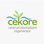 IKEPO s.r.o. - relaxační masáže – logo společnosti