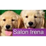 Krábková Irena - Salon Irena – logo společnosti