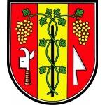 Město Velké Bílovice – logo společnosti