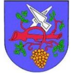 Obec Hodějice – logo společnosti