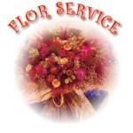 FLOR SERVICE, s.r.o. sušené květiny – logo společnosti