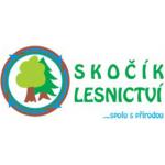 Lubomír Skočík- PILA – logo společnosti