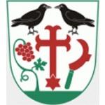 Obec Havraníky – logo společnosti