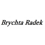 Brychta Radek - půjčovna minibusů – logo společnosti