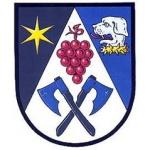 Obecní úřad Strážovice – logo společnosti