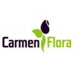 CARMEN TEAM, s.r.o. – logo společnosti