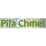 Chmel Zbyněk - Pila Chmel – logo společnosti