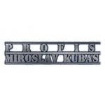 KUBAS Miroslav- PROFIS-STAVEBNÍ PRÁCE PRAHA 10 – logo společnosti