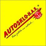 AUTOSKLO - H.A.K. spol. s r.o. (pobočka Litomyšl) – logo společnosti