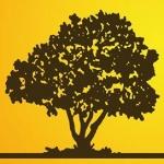Orange Tree, s.r.o. – logo společnosti