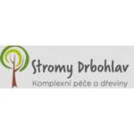 Drbohlav Luboš – logo společnosti