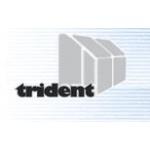 Konejl Jan, Ing.-TRIDENT – logo společnosti