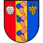 Obecní úřad Patokryje – logo společnosti