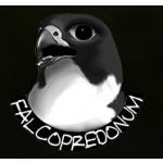 Wolejník Pavel - Falcopredonum – logo společnosti