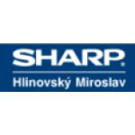 Hlinovský Miroslav- opravy elektromotorů – logo společnosti