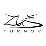 Základní umělecká škola Turnov – logo společnosti