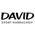 DAVID sport Harrachov s.r.o. - sportovní vybavení – logo společnosti