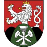 Město Košťany – logo společnosti