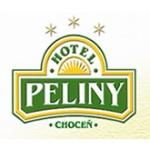 HOTEL PELINY – logo společnosti