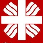 Diecézní charita Litoměřice – logo společnosti