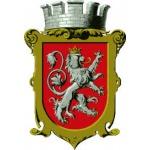 Město Dašice – logo společnosti