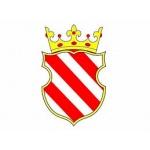 Městský úřad Sezemice – logo společnosti