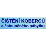 Věra Manyczová - ČIŠTĚNÍ KOBERCŮ a čalouněného nábytku (pobočka Děčín) – logo společnosti