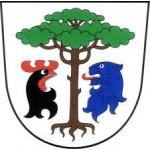 Obec Borovnice okres Trutnov – logo společnosti
