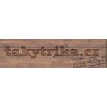 Malý Emil- Takytrika.cz – logo společnosti