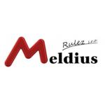 Meldius Rulez s.r.o. – logo společnosti