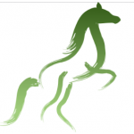 Jízdárna Dřevona - Hrabětice – logo společnosti