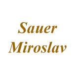 Sauer Miroslav – logo společnosti
