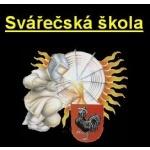 Dopravní vzdělávací institut, a.s. - Svářečská škola Česká Třebová – logo společnosti
