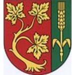 Obec Smolnice – logo společnosti